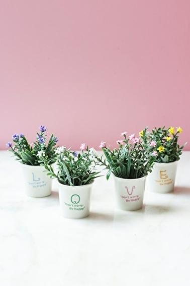 Arma House 4'lü Garden Love Yapay Şimşir ( Yapay Çiçek ) Renkli